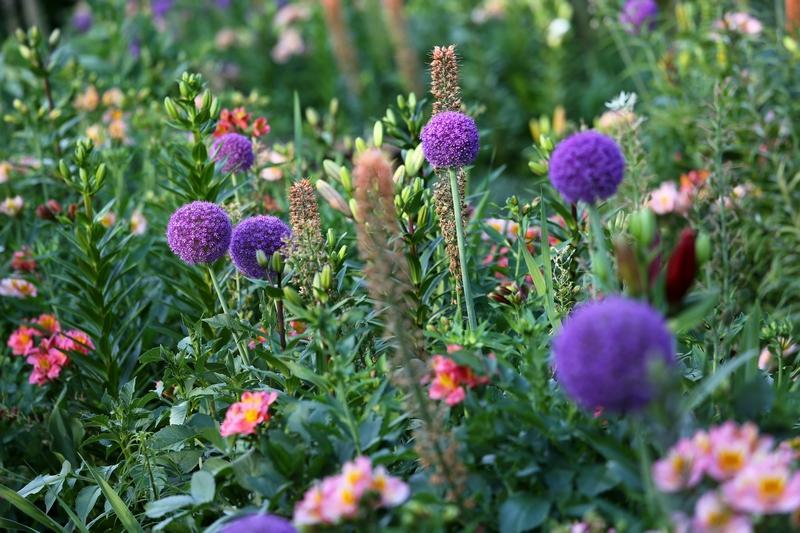 Jardin Fleuriste d'Eyrignac ©Jérome Morel