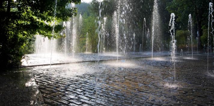 Jardins de l'Imaginaire jardins d'eau