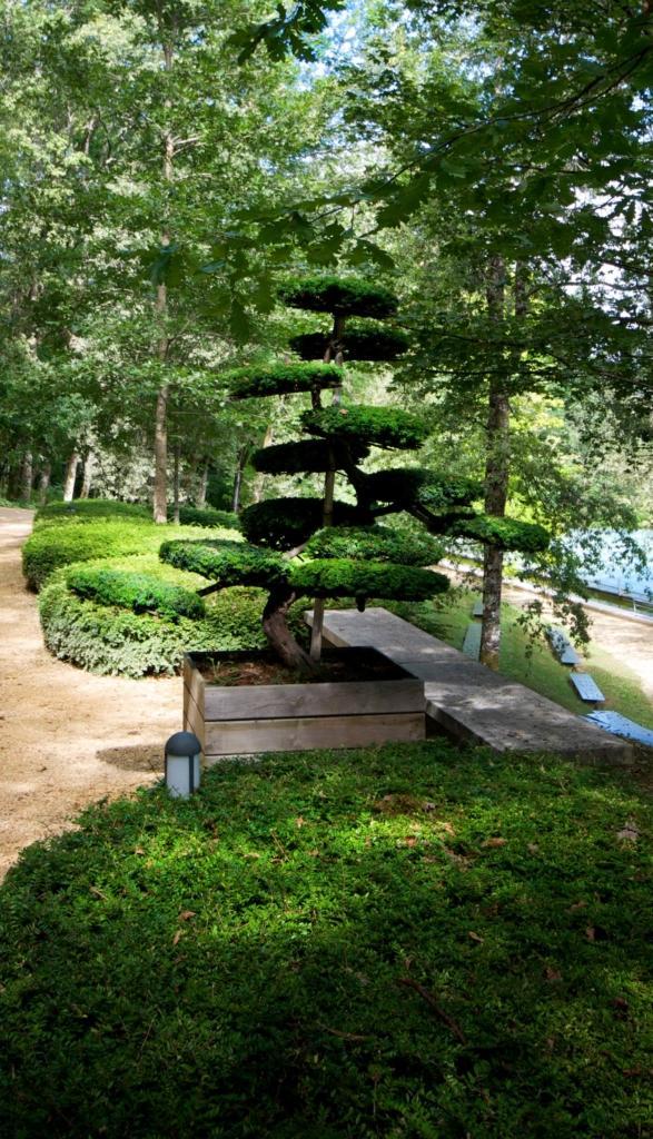 Jardins de l'Imaginaire Niwaki