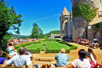chateau des milandes animation spectacle rapaces